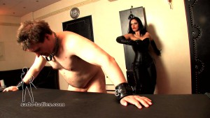 19.03.2016 – Sado-Ladies – Mistress Ezada Sinn – Not Allowed To Move – cruel, corporal punishment, femdom spanking