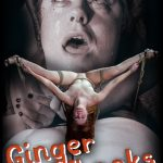 Release 28.04.2016 – Ginger Whacks – Barbary Rose – HD, Extreme, depfile