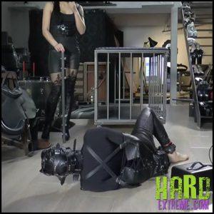 Release 12.05.2016 – MISTRESS GAIA – MILKING CUM – HD, bdsm, rope bondage, depfile