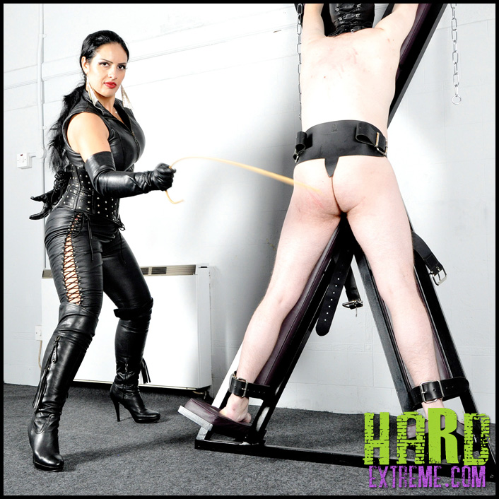 You dominatrix sub around slapping femdom excellent