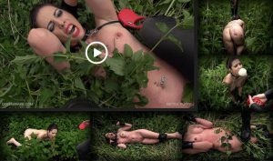 Release 30.07.2016 – Queensnake – NETTLE PUPPY – Full HD-1080p, queensnake.com, nettle, outdoor, lezdom