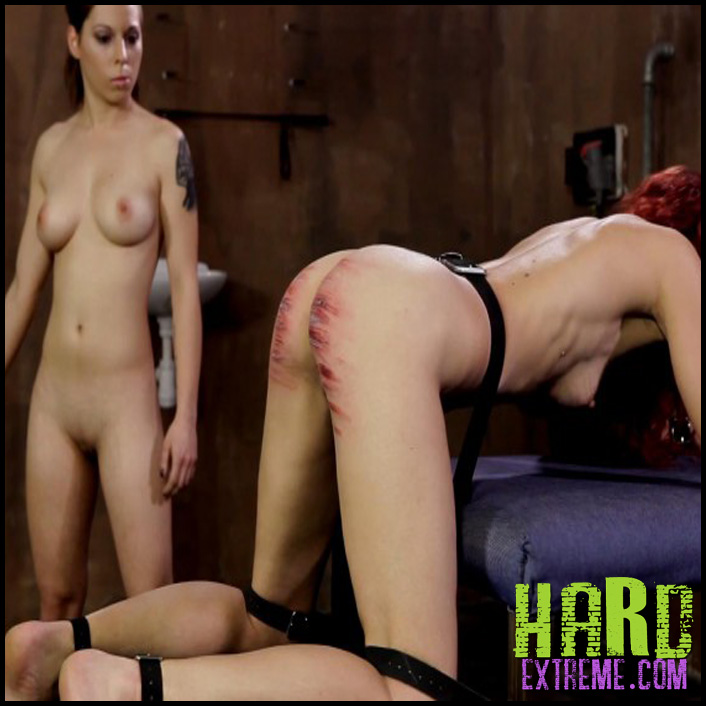 Wheel_of_Pain_13_Gigi-800x450