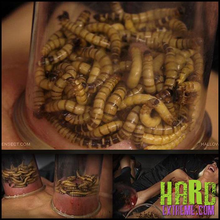 Queensect - HALLOWEEN HORROR - Full HD-1080p, queensect.com, QS, Tanita, lezdom, humiliation, dirty, mess