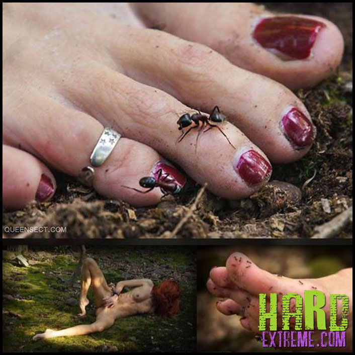 Queensect - MOSS BED - Full HD-1080p, queensect.com, foot-torment, foot-fetish, ants, insect