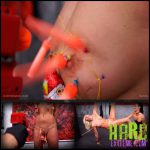 Release September 29, 2016 – Queensnake – Santa Hunt – Full HD-1080p, humiliation, piercing, needles, stuffing, anal-stuffing, insertion