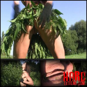 Release October 4, 2016 – Queensnake – Nettle Jungle – Full HD-1080p, nettle, self-torment, outdoor, stuffing, insertion
