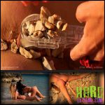 Release October 2, 2016 – Queensnake – Stone Womb Nazryana – Full HD-1080p, stones, stuffing, insertion, outdoor, speculum, pee