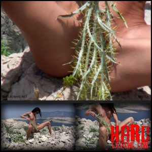 Release October 6, 2016 – Queensnake – Thistle Thirst – Full HD-1080p, thistle, self-torment, whipping, outdoor