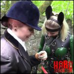 Release October 9, 2016 – Wild Pony, Rubbed Out and Casting Lesson – HD -720p, Seriousimages.com, bondage, torment