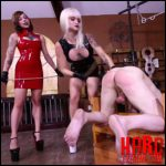 Clubdom – Dahila Rain & Harlow Punish Him Like A Dog –  slave torture, punishment, cane, caning (Release October 24, 2016)