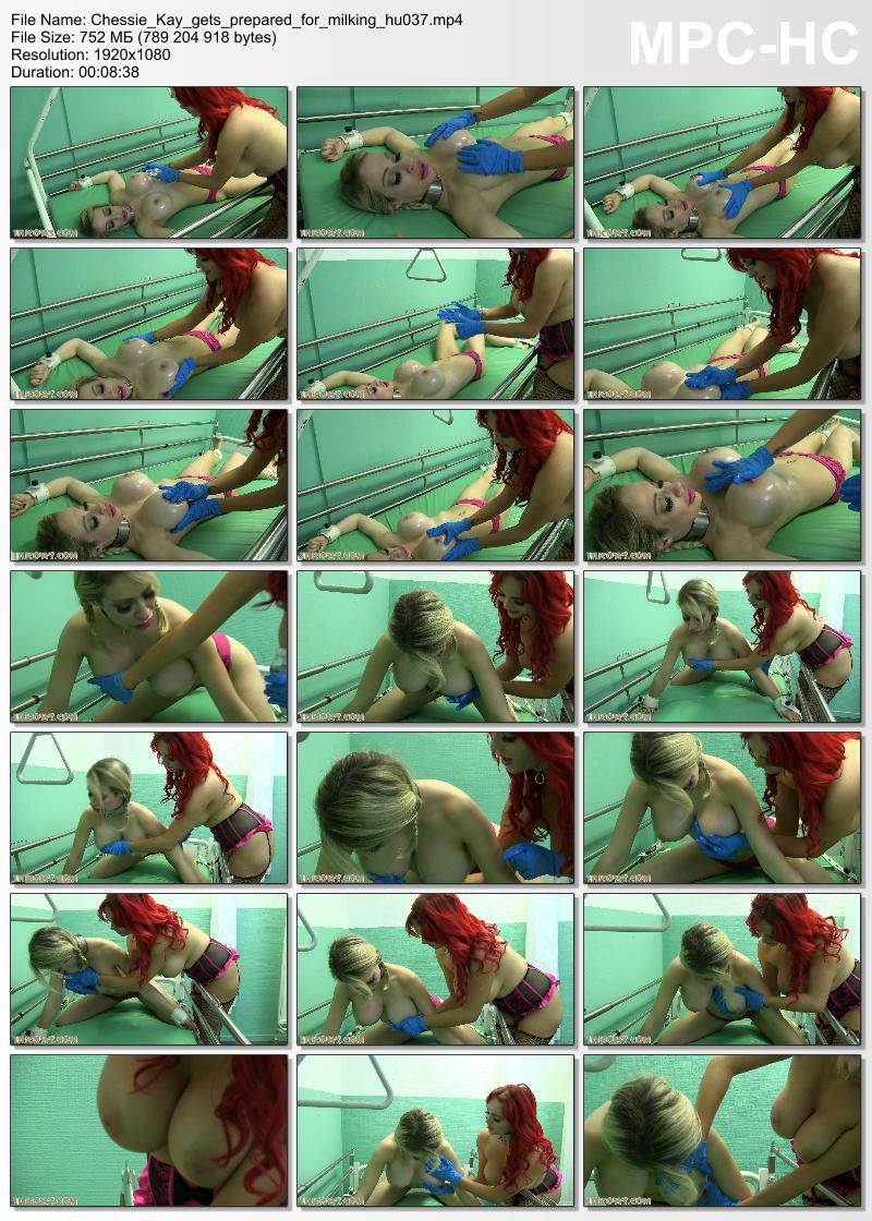 chessie_kay_gets_prepared_for_milking_hu037-mp4_thumbs_2016-11-08_21-34-59-800x1120
