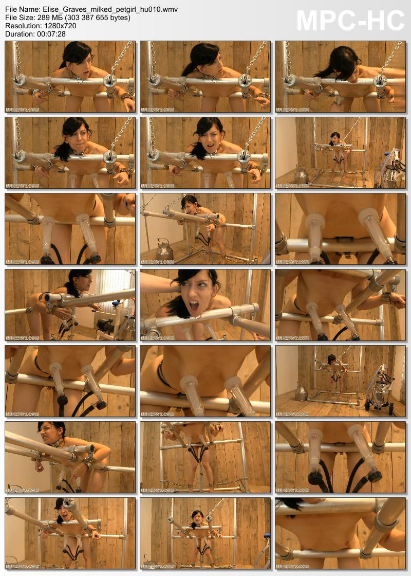 elise_graves_milked_petgirl_hu010-wmv_thumbs_2016-11-03_20-52-28-800x1120
