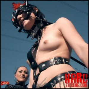 Julia The Little Ponygirl – Lady Seraphina, Baroness Bijou and Julia Part Five Bloodangels.com – Full HD-1080p, bondage, chain (Release November 19, 2016 )
