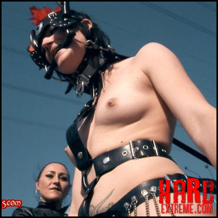 julia_the_little_ponygirl_lady_seraphina_baroness_bijou_and_julia_part_four_clip452-800x450