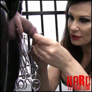 Miss Velour – Caged Dolls Seriousimages.com – HD -720p, bondage (Release November 21, 2016)