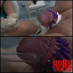 Die Nadelkrone 1-2 Parts – Full HD-1080p, extreme pain slave, medical femdom (Release December 25, 2016)