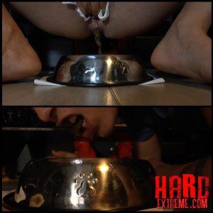 FAST REPAST – Full HD-1080p, Crazy Shit Eating, Big Pile (Release December 04, 2016)