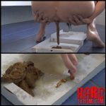 Pizza pooping – Full HD-1080p, solo scat, depfile scat (Release December 06, 2016)