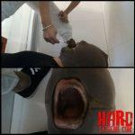 The Toilet punishment! feeding with my shit – Die Toiletten Bestrafung! Zwangs Fütterung mit meiner Scheiße – Full HD-1080p, femdom scat (Release December 04, 2016)