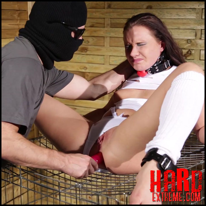 Humiliation porn male domination