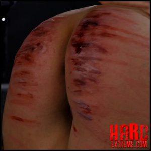 ElitePain – Lomp`s Court – Case 10 – Full HD-1080p, Elite Pain BDSM, Ep-castings bdsm (Release March 05, 2017)