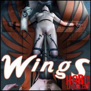 Insex – Wings – Sailor Luna – HD, labia, clamps, pussy bondage (Release June 26, 2017)