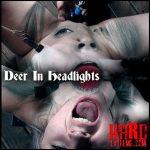 Hardtied – Deer In Headlights – Bambi Belle – HD-720p, bdsm porn videos, teen bdsm porn (Release October 17, 2017)