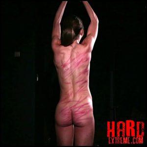 ElitePain – Wheel of Pain 24 – Full HD-1080p, whipping, spanking bdsm, extreme porn (Release November 02, 2018)