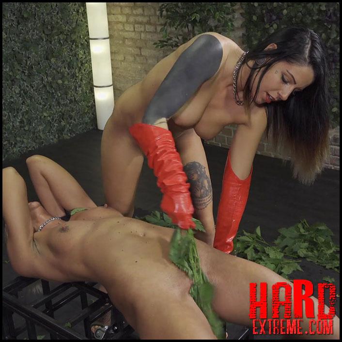 Think, that demanding bondage dyke lesbian extremely site theme interesting